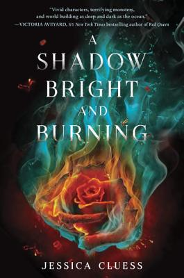 a-shadow-bright-and-burning-cluess